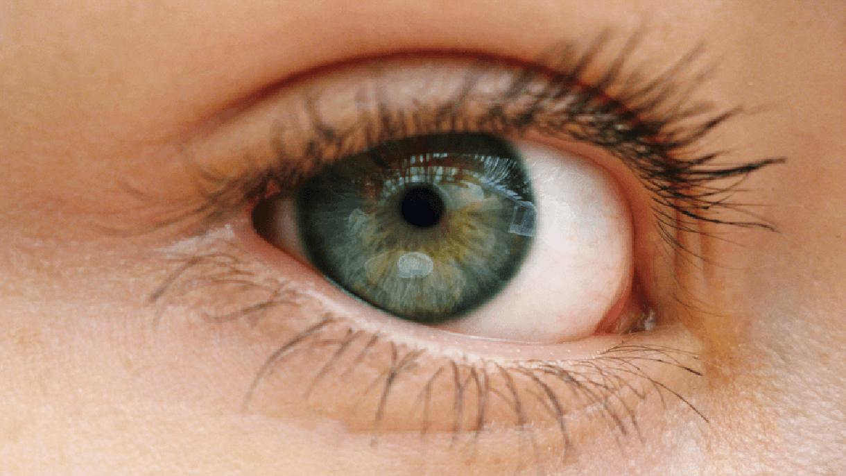 Closeup photograph of an eye